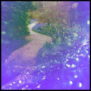 The Bonny Fairy Path